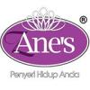 Logo Anes